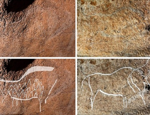 12 ezer éves barlangrajzokat találtak Baszkföldön