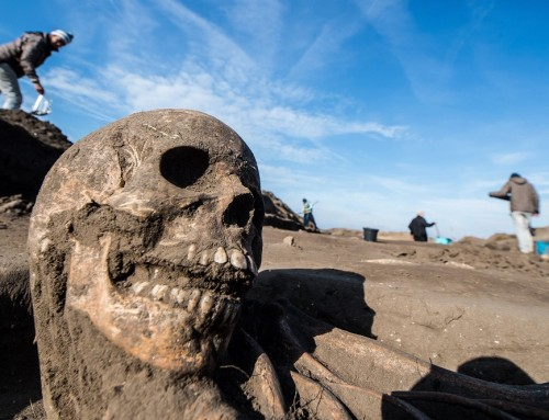 Félezer középkori kun és magyar sírt tártak fel Tázláron